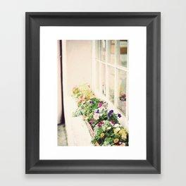 charleston flower boxes Framed Art Print