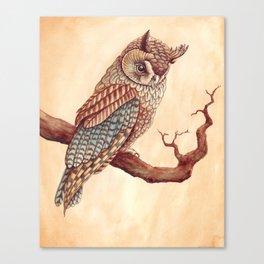 The Long Eared Owl Canvas Print