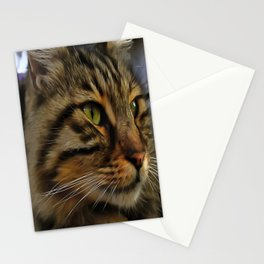 Aslan The Long Haired Tabby Cat Stationery Cards