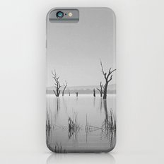 Nature's Sympathy iPhone 6s Slim Case