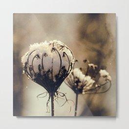 winter blossom Metal Print