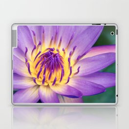 Ao Lani Heavenly Light Laptop & iPad Skin