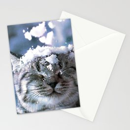 Snow Cat Stationery Cards