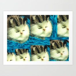 Cat Reflection Art Print