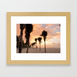 The Palms Greeting the Day Framed Art Print