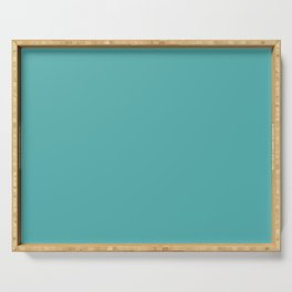 Solid Color Dark Pastel Teal Pairs to Pantone 15-5217 Blue Turquoise Serving Tray