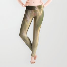 Apache Plume Leggings