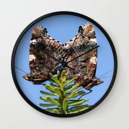 Red Admiral Butterflies Mating Wall Clock