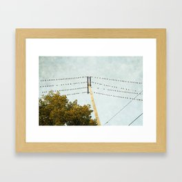 Birds on Wires Framed Art Print