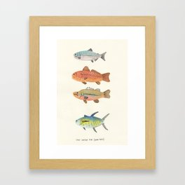 Salt-Water Fish Framed Art Print