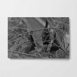 Dark Bat Laughs Metal Print