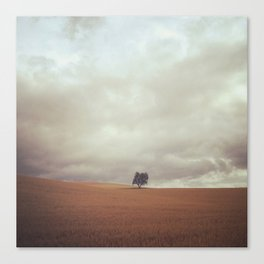 Camino Tree Canvas Print