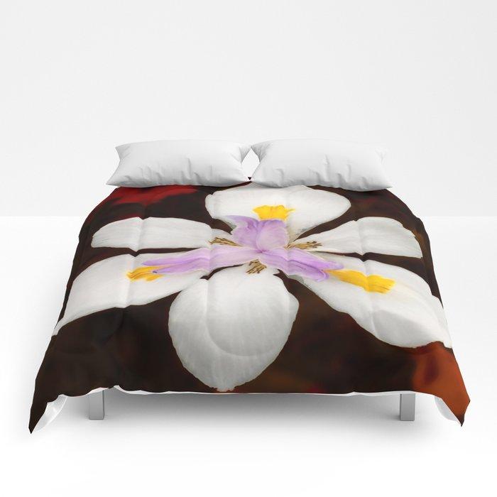 Wild Iris Comforters