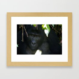 Thinking Hard Framed Art Print