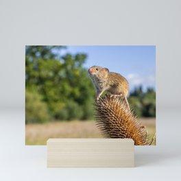 Top of the World. Mini Art Print