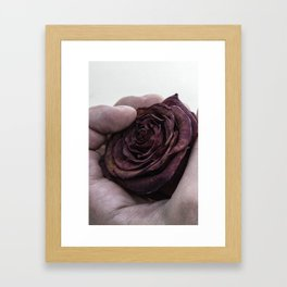 Hand Clutching a Dying Rose Framed Art Print