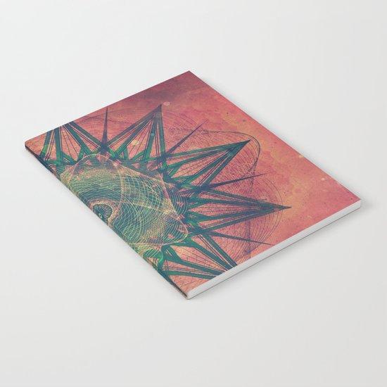 styr stryy Notebook