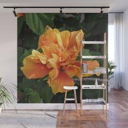 The Golden Double Hibiscus Next Door Wall Mural