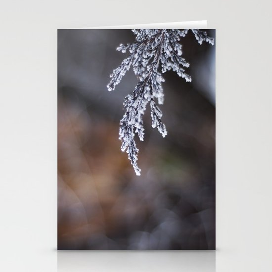 Frosted Juniper Stationery Cards