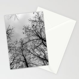 Creepy woods, black and white Stationery Cards