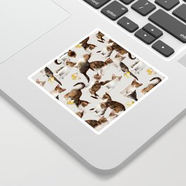 Kittens and Butterflies - a painted pattern Sticker
