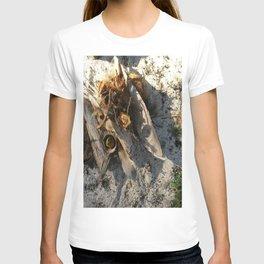 Ambiance Macré 2 . Le lion des sables se réveille doucement T-shirt