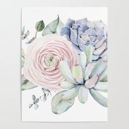 Succulent Blooms Poster