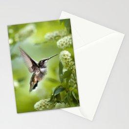Hummingbird Love Stationery Cards