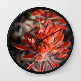 Desert Paintbrush Wall Clock
