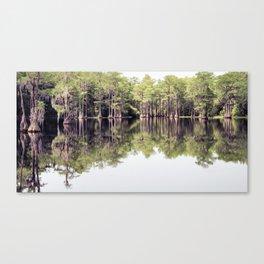 Florida Beauty 7 Canvas Print