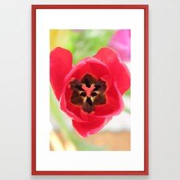 Red Heart Tulip Framed Art Print