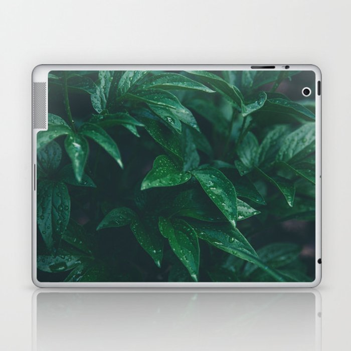 Green Leaves with Water Droplet - Nature Photography Laptop & iPad Skin