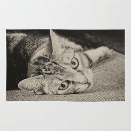 little cat Rug