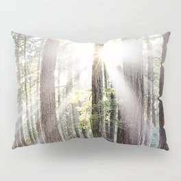 Sunburst Through the Redwoods Pillow Sham