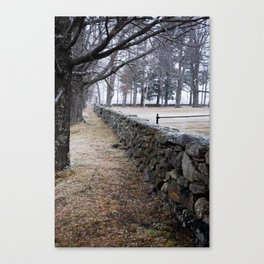 Stone Wall 01 Canvas Print