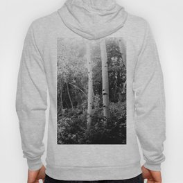 The Aspen Grove, No. 2 Hoody