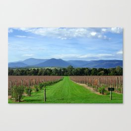 Yarra Yalley Canvas Print