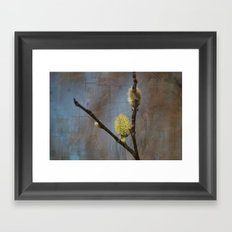 Spring Buds Framed Art Print