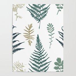 Illustration of fern seamless pattern Poster