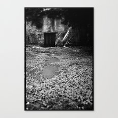 Over the Hill and through the Swamp Canvas Print
