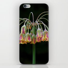 Delicate Drooping Flower iPhone Skin