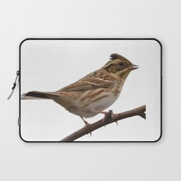 Rustic Bunting Bird Vector Isolated Laptop Sleeve