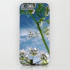 Herb iPhone 6 Slim Case