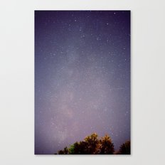 Meteors near the Milky Way Canvas Print