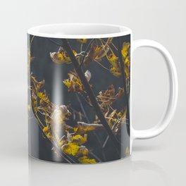 Nature photo - autumn leaves Coffee Mug