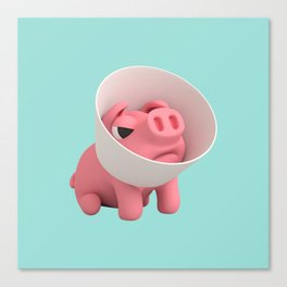 Rosa the Pig and Cone of Shame Canvas Print