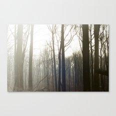 Winter 4 Canvas Print