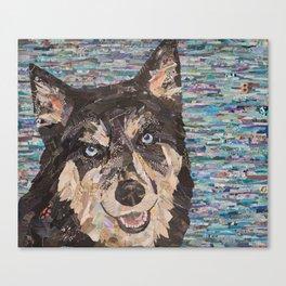 husky on blue background Canvas Print
