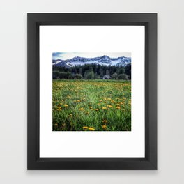 Dandelion Barn Framed Art Print