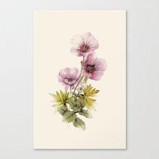 Geranium & Gardenmint Canvas Print
